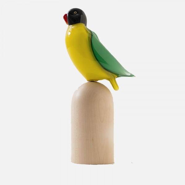 Tropical Birds B14